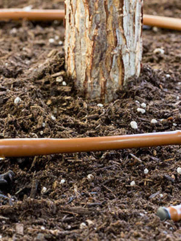 Use this 6 mm dripline solution for tight spaces and raised planters.